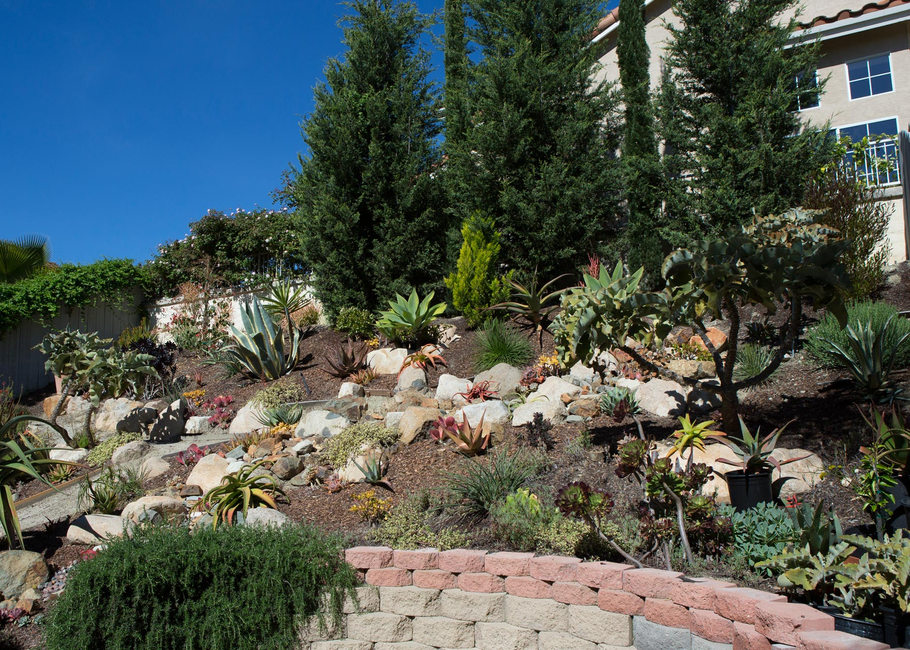 Hillside Native Design Carlsbad