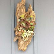 Driftwood-(NEW)