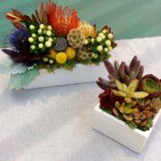 FloralOvals_CubesPlantedExample