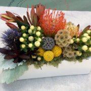 FloralOvals_CubesRectangle