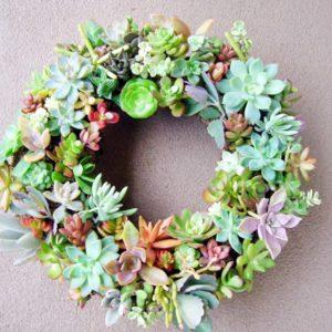 FreshChic_Succulent-wreath