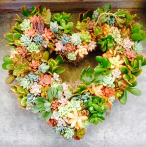 Chicweed - Succulent Heart Wreath