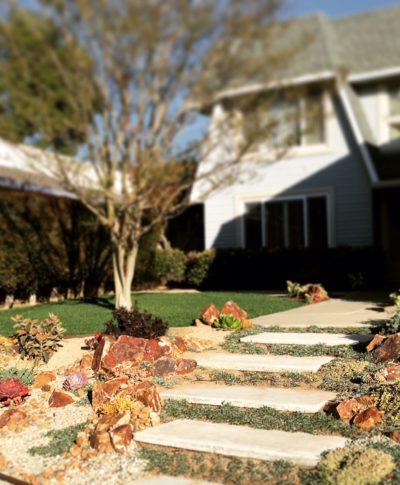 Succulent path landscape