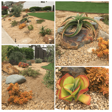 LandscapeBy-CWDesignLandscaping